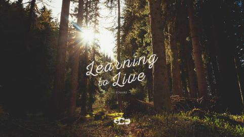 Romans: Learning to Live